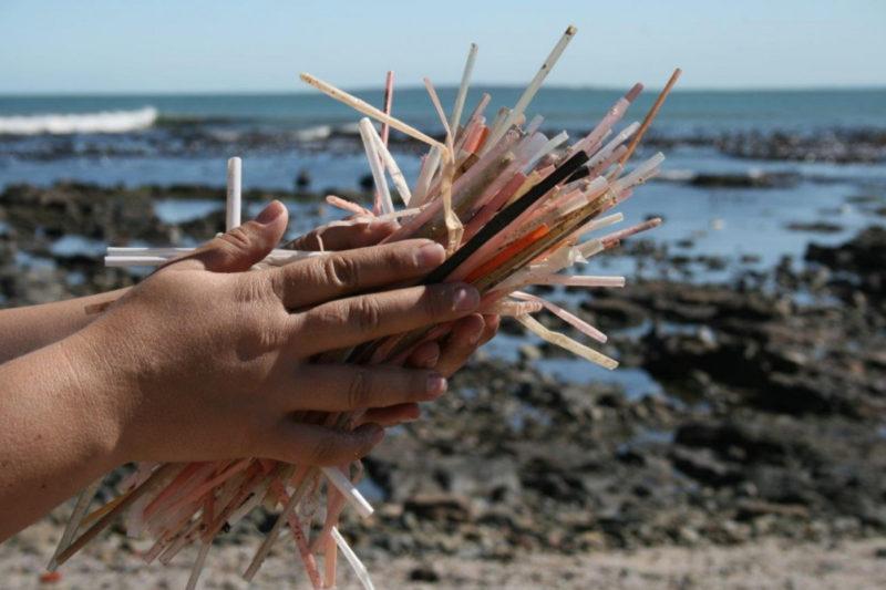 Millones de sorbetes terminan en los océanos todos los días.
